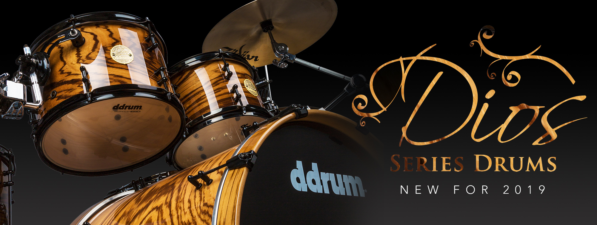 ddrum New for 2019